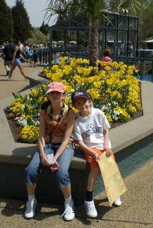 Amazing flower displays near Escape from Pompeii at Busch Gardens Williamsburg.