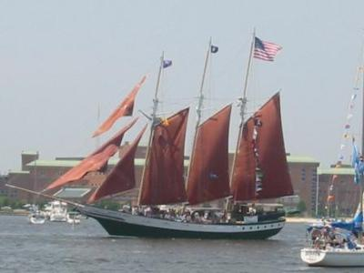 The Parade of Sail at Norfolk Harborfest